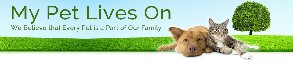 BIOS Biodegradable Pet Urn